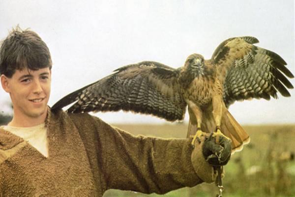 Мэттью Бродерик – биография, фильмы, фото, личная жизнь, последние новости 2019